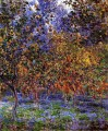 Under the Lemon Trees Claude Monet